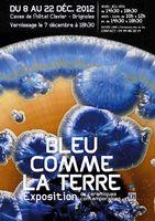 Du 8 au 22 déc. 2012 | Exposition Bleu comme la terre à Brignoles (83)