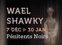 du 7 décembre au 8 janvier 2014 | Wael Shawky, un chemin vers le Caire