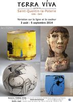 du 3 aout au 5 sept. 2014 | Expo Variation sur la ligne et la couleur | St Quentin la Poterie (30)