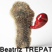 Stage Masterclass VIA Vallauris, Béatriz Trepat - du 29 août au 2 septembre 2016 (Alpes Maritimes)