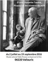 Exposition Picasso, D'une chouette l'autre - Vallauris, jusqu'au 19 septembre 2016 - céramiques, dessins, peintures