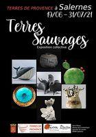 Exposition céramique Terres sauvages, Musée Terra Rossa de Salernes (Var) du 19 juin au 31 juillet 2021