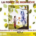 Exposition à Aix-en-Provence jusqu'au 27 février 2011 | La forêt de mon rêve