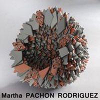 Stage Masterclass mars 2015 Martha Pachon Rodriguez