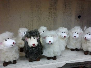 Les moutons