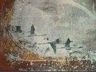 Pièce murale CERAMIQUE BOSCOLO - Fabricant à - Architecture - Eléments décoration