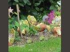 Ça picore L'ATELIER DU MILLE PATTES - Fabricant à - Jarre et poterie de jardin