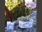 Jardinière et encrier lavande ATELIER DU BARRI - Fabricant à - Objets décoration